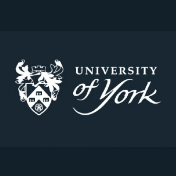 University of York becomes UK's first to appoint a 'Professor of Acupuncture Research'